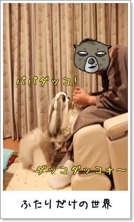 2010_1120_200943AA.jpg