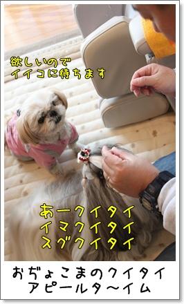 2010_1121_084507AA.jpg