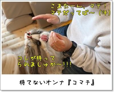2010_1121_084549AA.jpg