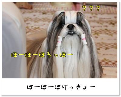 2010_1122_074454AA.jpg