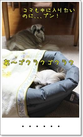 2010_1125_191400AA.jpg