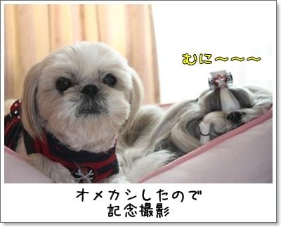 2010_1128_132808AA.jpg