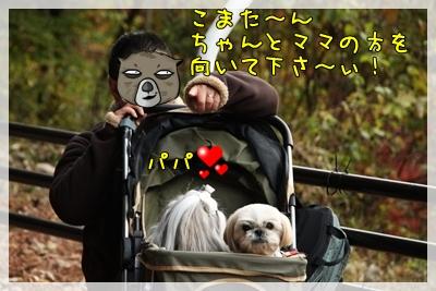 2010_1128_154543AA.jpg