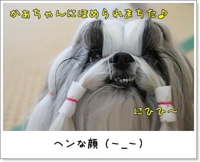 2010_1129_074253AA.jpg