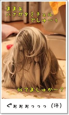 2010_1201_203627AA.jpg