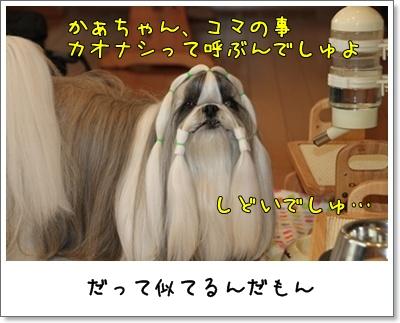 2010_1202_074700AA.jpg