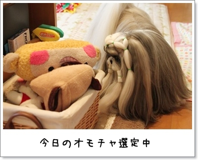 2010_1202_074723AA.jpg