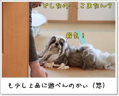 2010_1204_074101AA.jpg