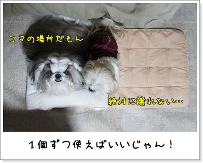 2010_1206_194847AA.jpg