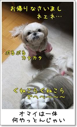 2010_1208_202100AA.jpg