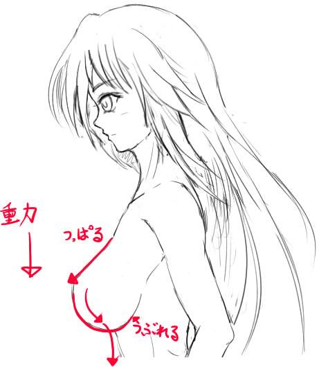 胸の描き方_18