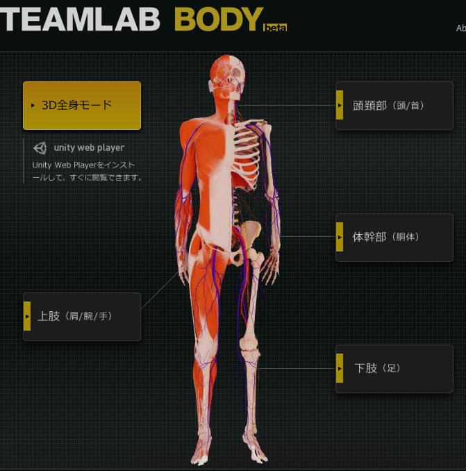 teamlab_body_00.jpg