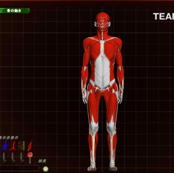 teamlab_body_05.jpg