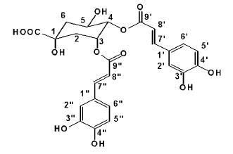 ジ-O-カフェオイルキナ酸