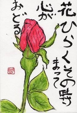 ヒロさんの絵手紙 ばら