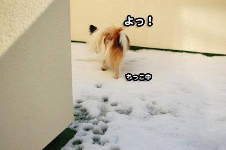 ベランダの雪04