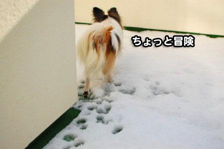 ベランダの雪03