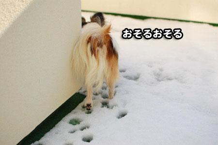 ベランダの雪02