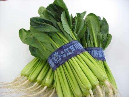 江戸川産小松菜
