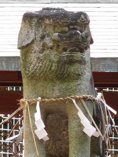 阿形の狛犬さん