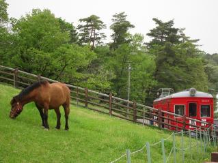 馬と赤い電車