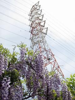 藤と名南岩塚分岐線 第7号鉄塔