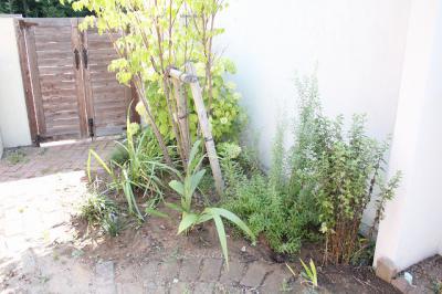 2011 9 garden