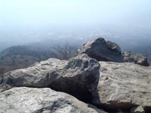 20110205-4.jpg