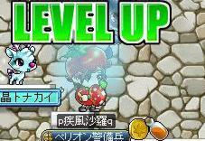 Maple110310_184822.jpg