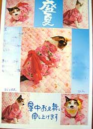 natunoojo_san1.jpg