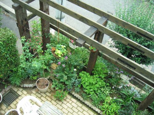 garden 018_convert_20080819105258