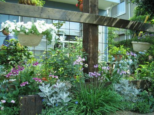 garden 043_convert_20080821162719