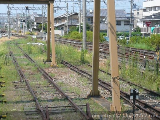 Panasonic_P1050697.jpg