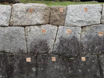 nahaka_20110319-4.jpg