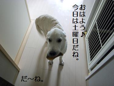 _0010576.jpg