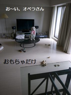 _0010585.jpg