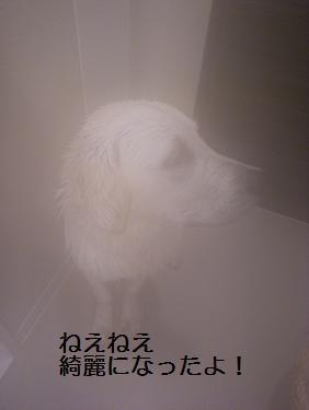 _0010603.jpg