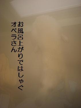 _0010604.jpg
