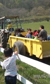 ウエムラ牧場まつり3