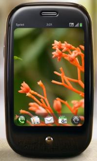 web_palm.jpg