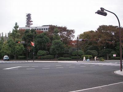 2008.11.10-19