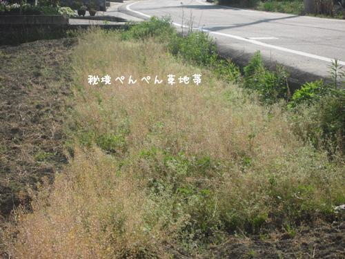 hikyou423.jpg