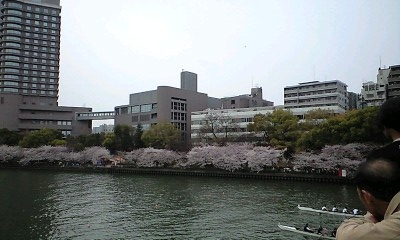 090405桜ノ宮1