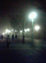 霧の遊歩道1
