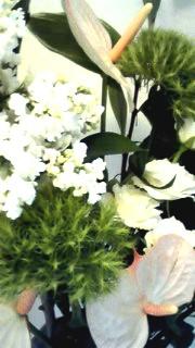5月10日 玄関花