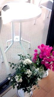 5月17日 バルコニー&お花