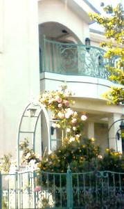 5月20日 四つ角の家