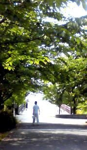 5月23日 遊歩道