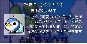 20071102001556.jpg