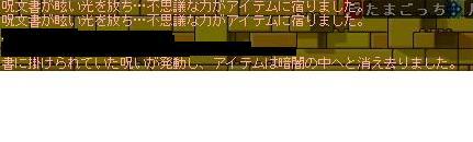 20071127190138.jpg
